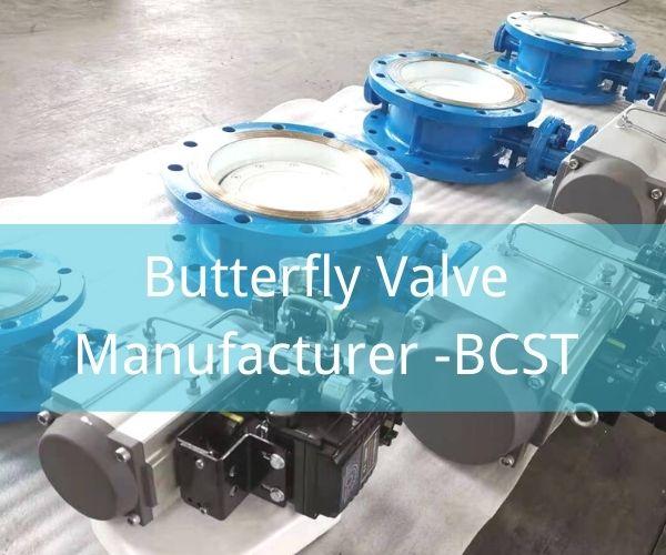 Butterfly Valve Manufacturer -BCST